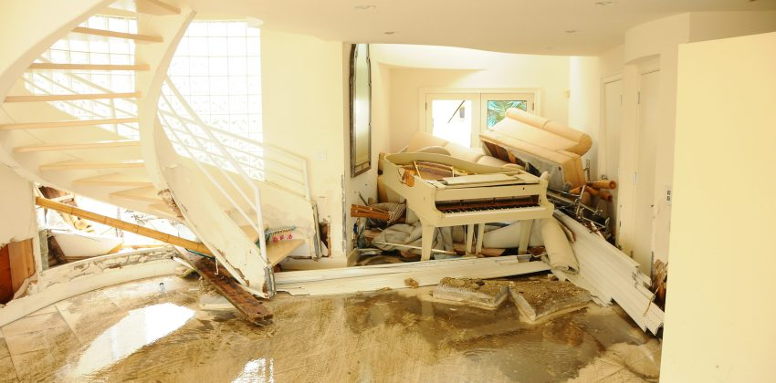 What is the difference between a Loss Adjuster and a Loss Assessor? Our specialist explains!